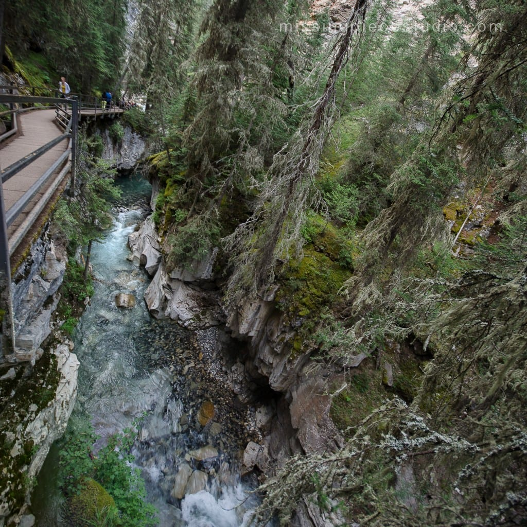 Johnston Canyon Creek-Banff Canada-Alberta011_pano